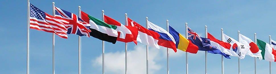 International Removals Insurance